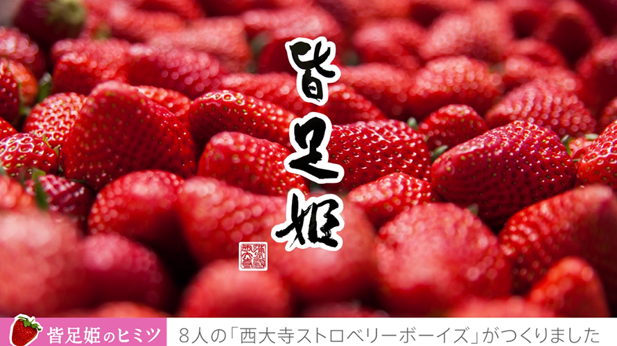 皆足姫PR動画